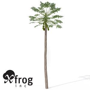 papaya plant 3d model