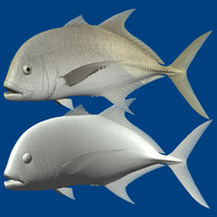 3d model of giant trevally