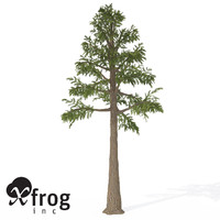3d xfrogplants archaeopteris trees