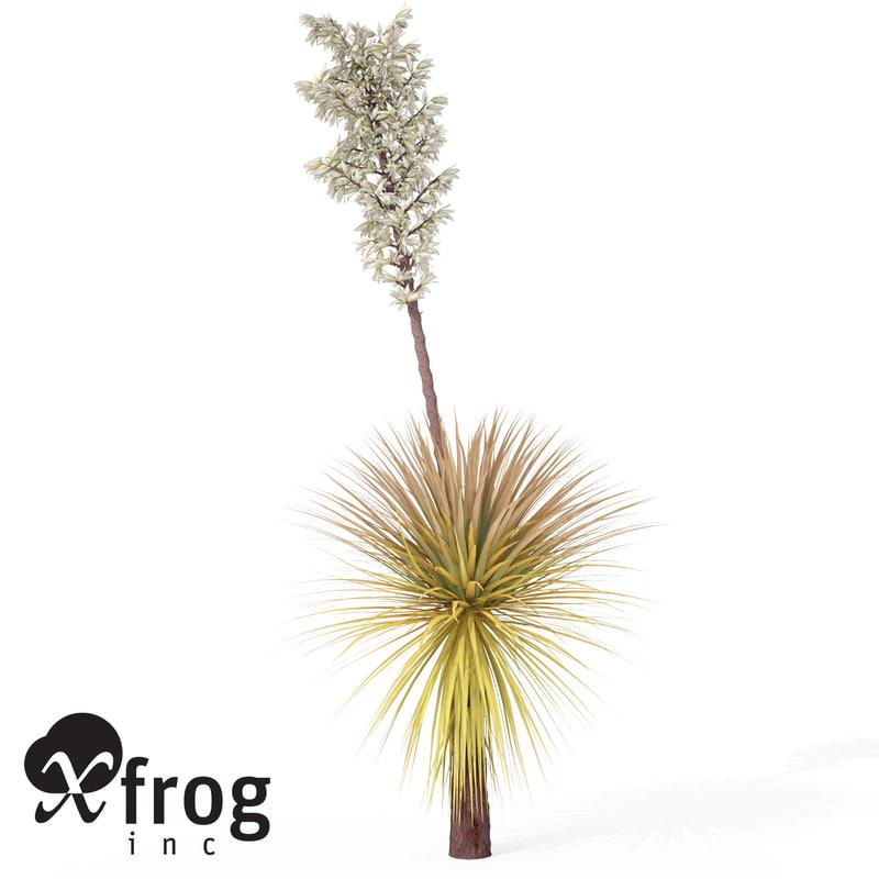 soaptree yucca plant 3d model