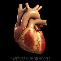 HEART V1