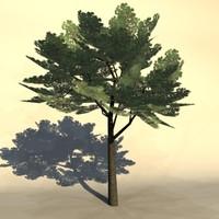 Euro_tree_1.zip