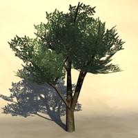 Euro_tree_2.zip