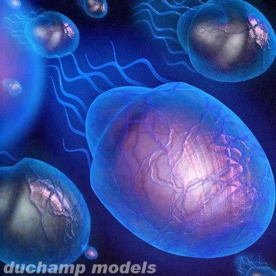 3d model life tentacles