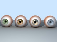 eyes pupil iris 3d max