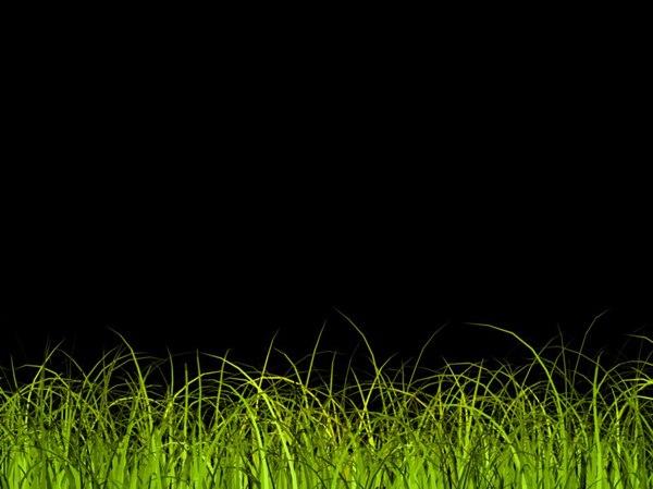 simulate grass 3d model