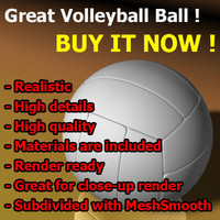 volleyball ball great 3d max