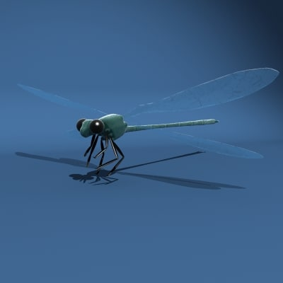 3d dragon fly model