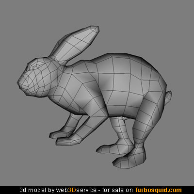 3ds real time rabbit