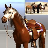 horses western riding 3d x