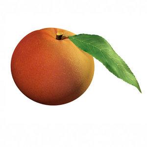 3d peach leaf