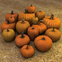 Pumpkin Set - 16 count