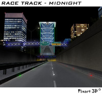 3ds race track city