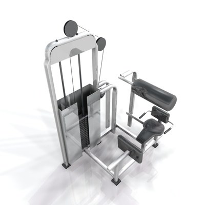 weight training 3d model
