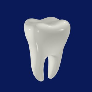 3dsmax tooth