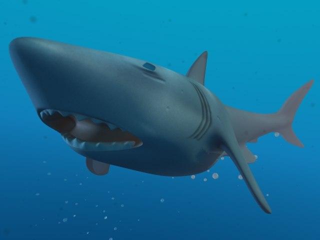 free shark lightwave discovery 3d model