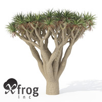 xfrogplants dragon tree 3d obj