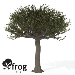 forest sandpaper fig tree 3d model