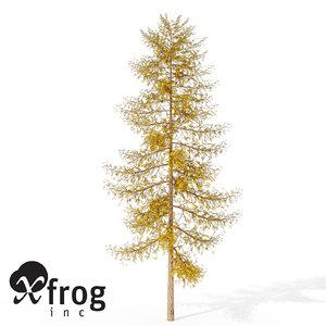 3ds max xfrogplants autumn european larch