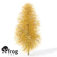 xfrogplants autumn tuliptree 3d 3ds