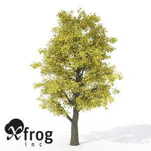 xfrogplants autumn littleleaf linden 3d 3ds