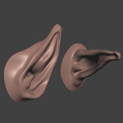 pointy ears 3d model
