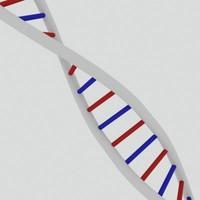 DNA strand 1.max