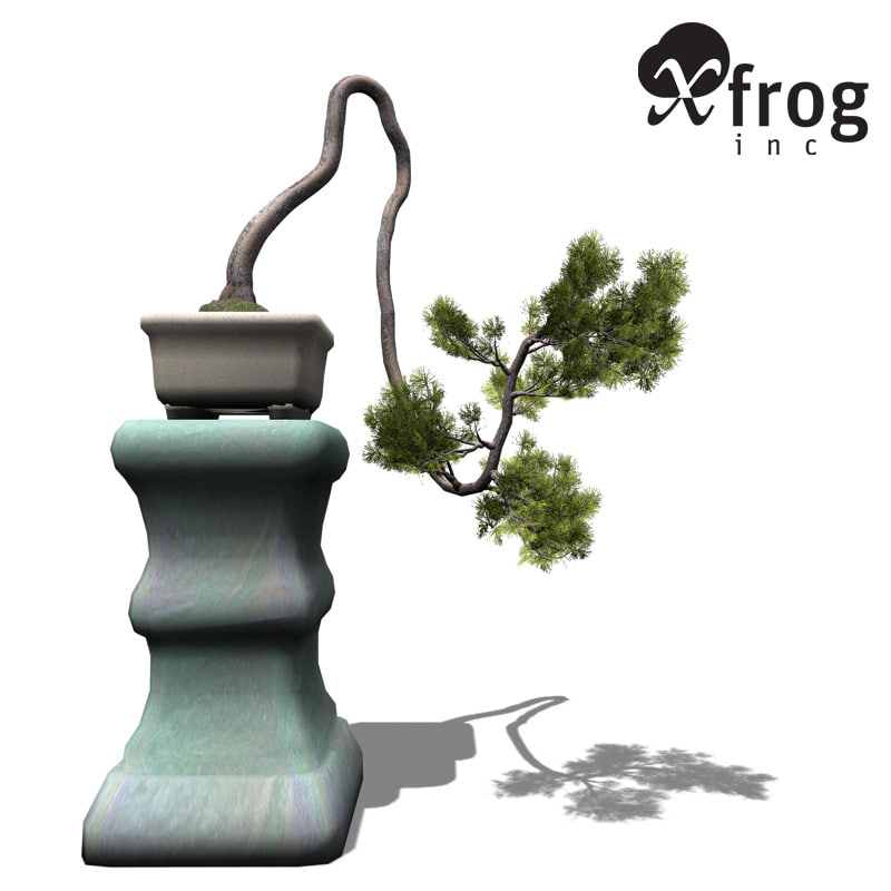 xfrogplants bonsai japanese white pine 3d 3ds