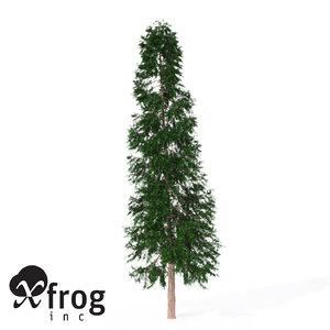 3d xfrogplants lawsons falsecypress tree