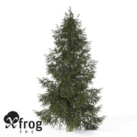 xfrogplants colorado spruce tree 3d lwo