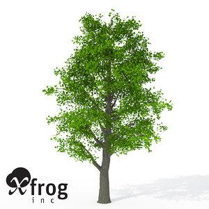 xfrogplants littleleaf linden tree 3d 3ds
