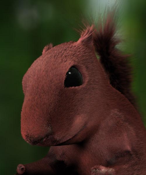 3d model of squirrel cute
