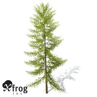 xfrogplants european larch tree 3d 3ds