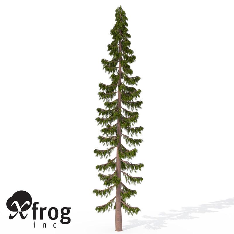 3ds xfrogplants serbian spruce tree