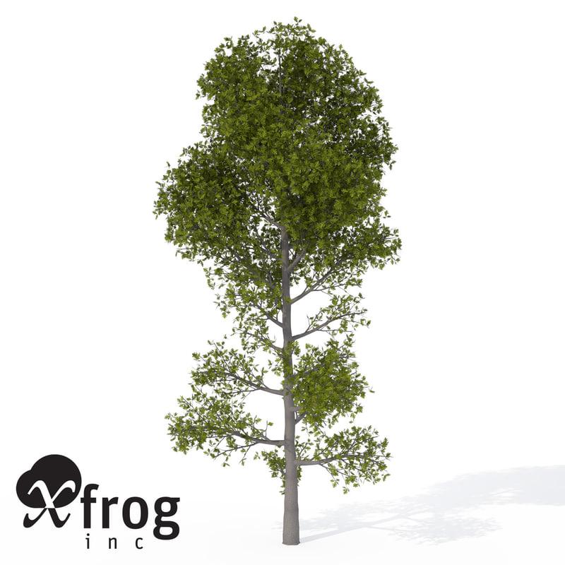 xfrogplants pyrenean oak tree obj