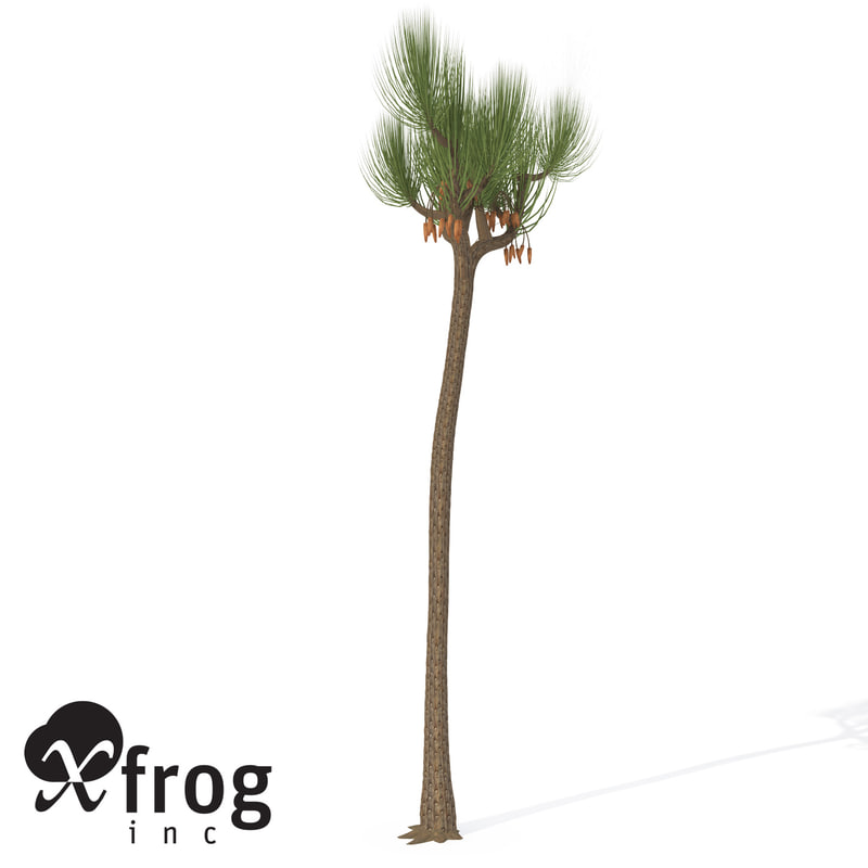 xfrogplants sigillaria plant 3ds