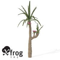 williamsonia tree plant 3d model