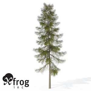 3d xfrogplants tamarack tree model