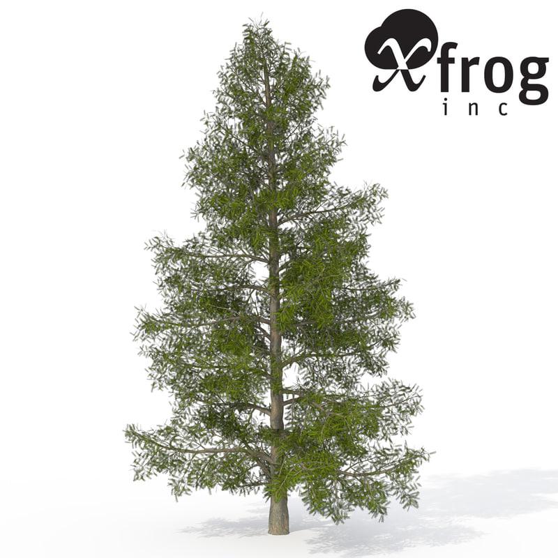 3d xfrogplants california nutmeg tree model