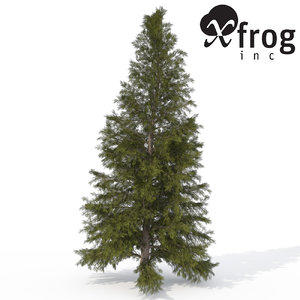 3d xfrogplants eastern hemlock tree model