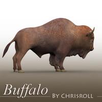 buffalo.zip