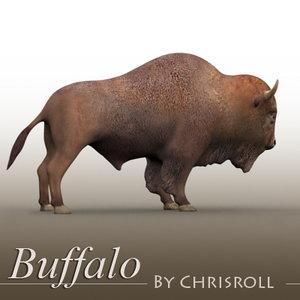 3d buffalo bison model