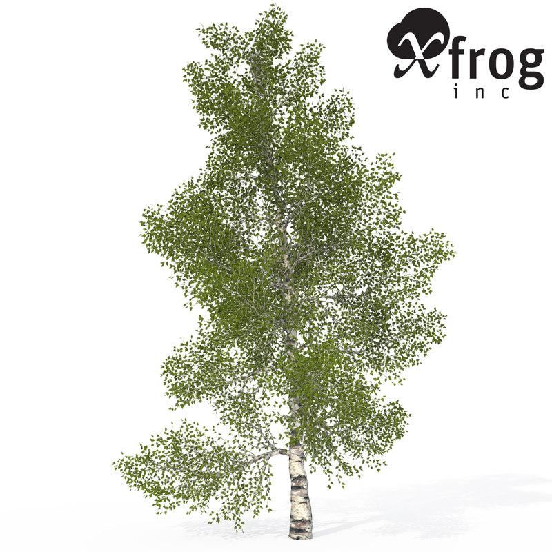 3d model xfrogplants paper birch tree