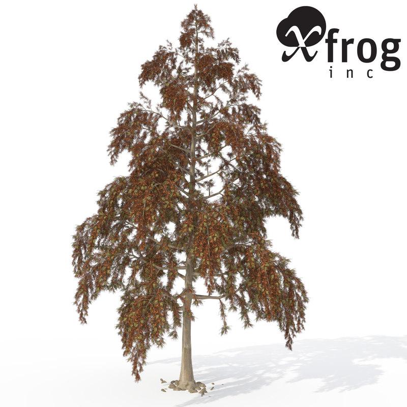 xfrogplants bald cypress tree 3ds