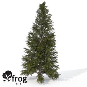 3d model xfrogplants eastern hemlock tree