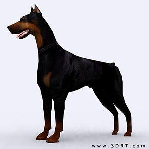 world war dog doberman 3d 3ds
