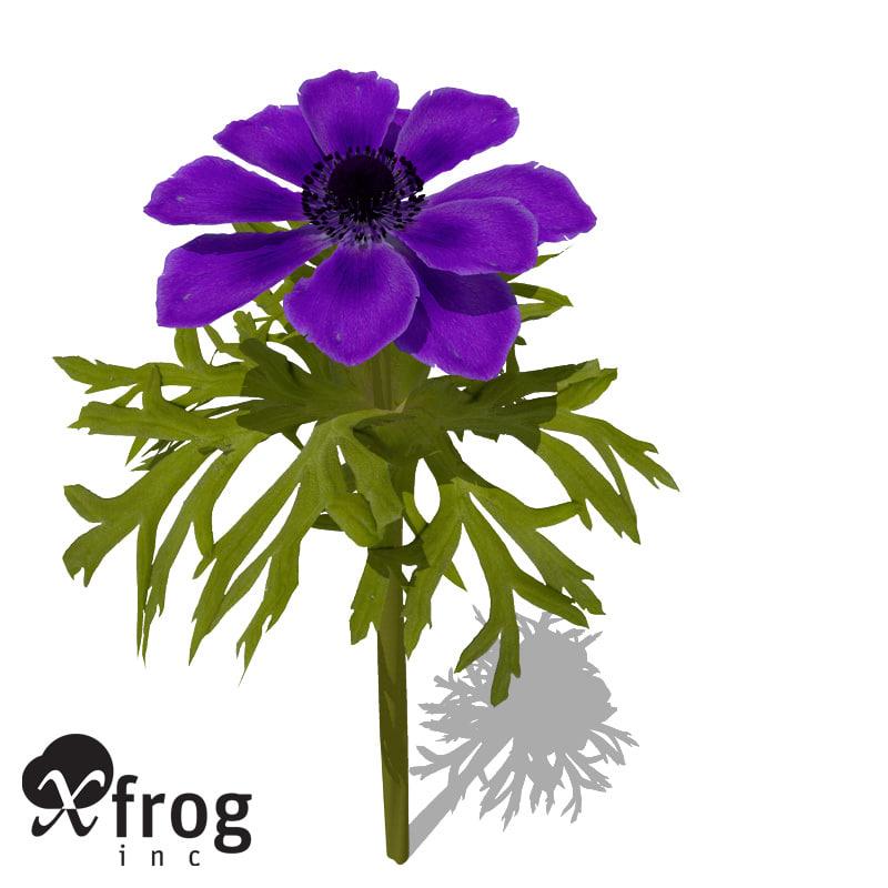 3ds max xfrogplants poppy anemone plant
