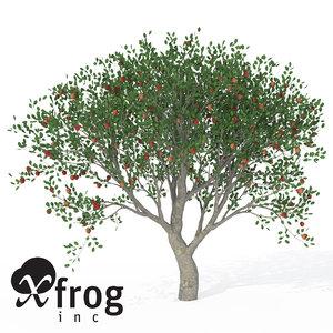 3d xfrogplants apple tree model