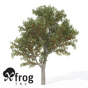 xfrogplants sweet cherry tree 3d 3ds