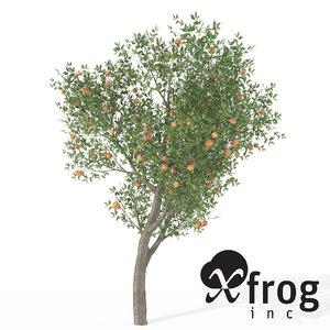 xfrogplants peach tree 3d 3ds